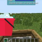 Top Minecraft Hacks
